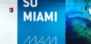 Campaña It's so Miami